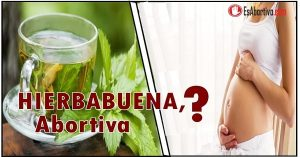 hierbabuena es abortiva
