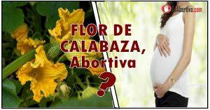 flor de calabaza en el embarazo