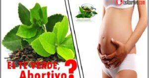 te verde embarazo