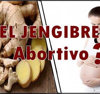 el jengibre es malo en el embarazo