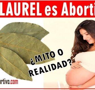 laurel en el embarazo