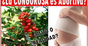 la congorosa en el embarazo